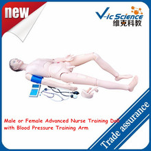 Male or Female Advanced Nurse Training Doll with Blood Pressure Training Arm