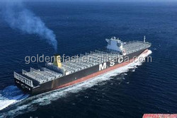 container shipping from china to world shipping company