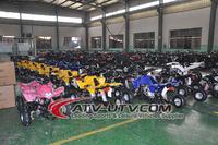50CC EEC Quad Chain Drive Buggy 4x4 adults Quad ATV(AT0511)