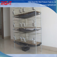 High quality Bird cage, rabbit cage direct manufacture