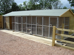 iron wire fence cheap block of 5 dog kennels with mesh run sections