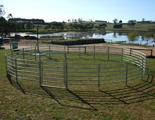 Hot dip galvanized cattle yard panels for horse / cattle / goat / sheep ( with ISO9001 and SGS)