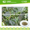 La reducción de glucosa en la sangre los niveles kosher extracto de café verde 50% el ácido clorogénico