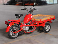 Hot Selling Tricycle / New 3 Wheel Electric Motorcycle
