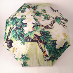 Promotion change color magic umbrella shop