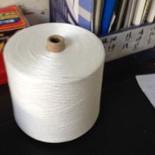 Hubei Welljoy 100% Spun Polyester Paper Yarn for Sewing Thread