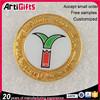 Artigifts company Professional die casting gold lapel pin