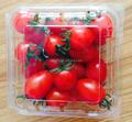 Fruta caixas recipiente de plástico bandeja