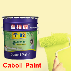 Caboli China factory directly sell high performance paint for wall paint on wall