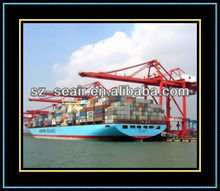 Universal sea logistics container freight rate from Shanghai to New Delhi