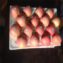 Fresh Fuji Apple