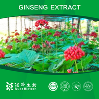 Anti-aging extract korean red ginseng extract drink