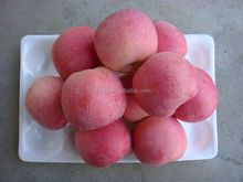 2014 new crop chinese fresh Fuji Apple from Best Food