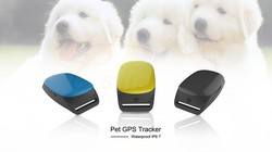 gps for cats and dogs, Mini GPS tracker for cat, kids, elderly, car, pet, asset