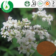 Healthcare Supplyment Tartary Buckwheat Extract