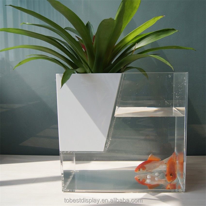 Custom Fashion Glass Fish Tank For Goldfish Betta Fish - Buy Glass ...