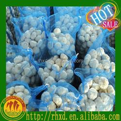 Wholesale Garlic Planter sale Natural Garlic from China