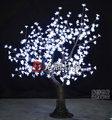 luz da árvore levou,luz da árvore da flor de cereja branca