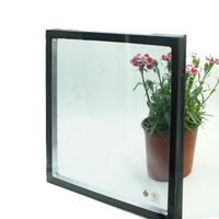 Coated Vision glass, Low e glass