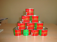 Organic fresh canned tomato paste for india market with good quality