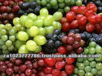 Sweet Fresh Grapes VERY HIGH GRADE Hot Sales