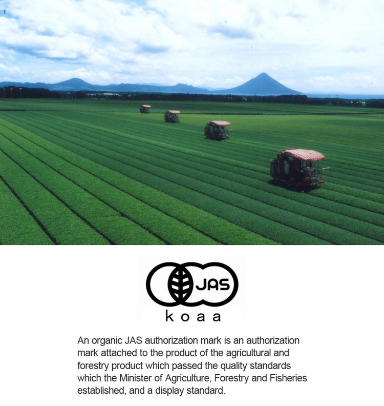 organic-3