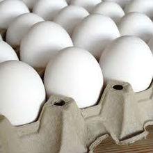 Fresco blanco huevos