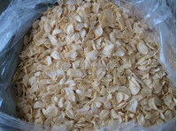 Indian Dehydrated Garlic Cloves / Flakes for Sale Export & Best Quality