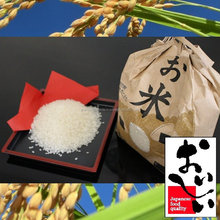 Nutritious and Hot-selling Akita Komachi with paddy field farm equipment made in Japan