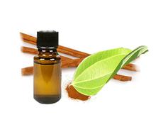 High quality Natural Pure Cinnamon essential oil