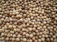 White pepper 550gl/ 500gl for export