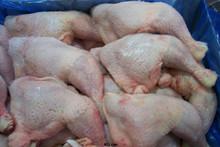 Chicken wing/chicken breast/chicken leg/chicken quarter/whole chicken/chicken gizzard/chicken halal/non halal