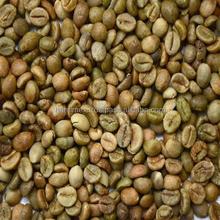 VIETNAM BEST GREEN ROBUSTA COFFEE BEANS EXPORTED