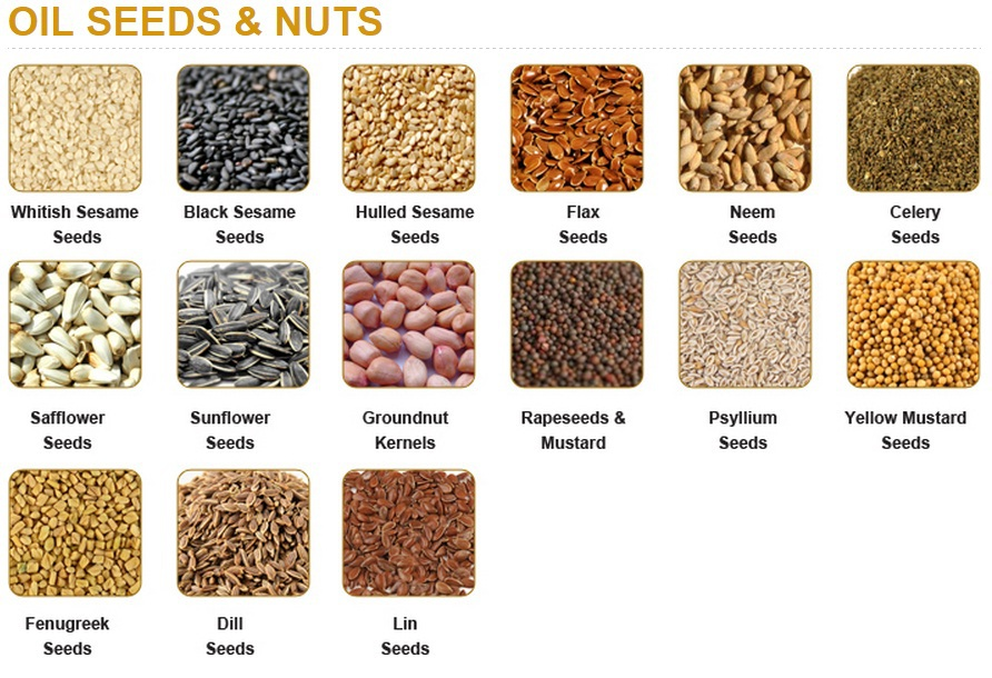 OIL SEEDS & NUTS - ROSUN NATURAL PRODUCTS PVT LTD INDIA