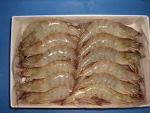 High Quality Frozen Vannamei White Shrimp