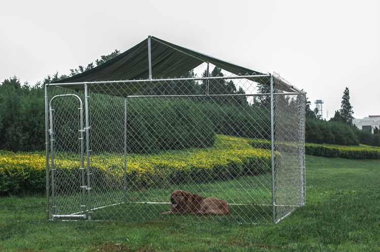 Hot sale 10x10x6ft high quality outdoor cheap chain link large dog house