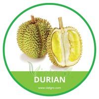 HIGH QUALITY FRESH ORGANIC DURIAN // VIETNAMESE FRESH FRUITS
