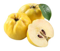 2015 juicy fresh quince fruits for sale