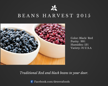 Red or Black Kidney Beans