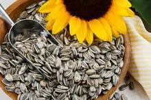 New Crop Sunflower Seeds