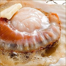 Delicious Hokkaido scallop meat at reasonable prices , with one/two shells