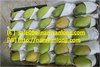 fRESH CAT CHU MANGO FRUIT with high quality and good price