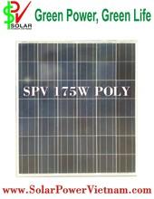 175W Poly solar panel (Solar Viet Nam Poly SPV175W)