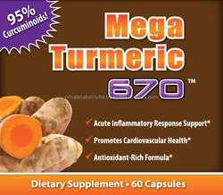 Gold Standard Nutrition Turmeric Capsules Herb Medicine