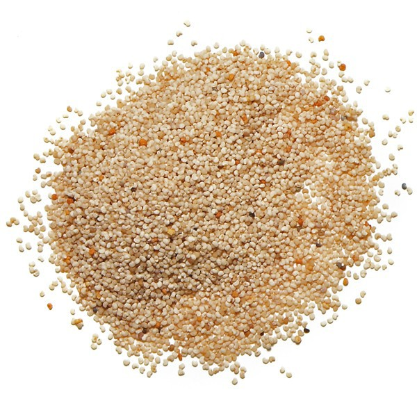 how to buy poppy seeds