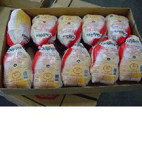 HALAL FROZEN WHOLE CHICKEN - USA and Brazil READY FOR EXPORT