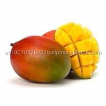 farm fresh mango