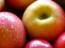 100% quality Fresh Red and Gold Apples Precious Grade A Fresh apples in bulk