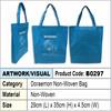 Doraemon non woven bag / shopping bag