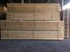 Pinewood Saw Timber/Pinewood Lumber/White Wood/ Radiate Pine / New Zealand Pine / Brazil Pine / Chile Pine/KD /GS